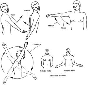 movimentos ombro